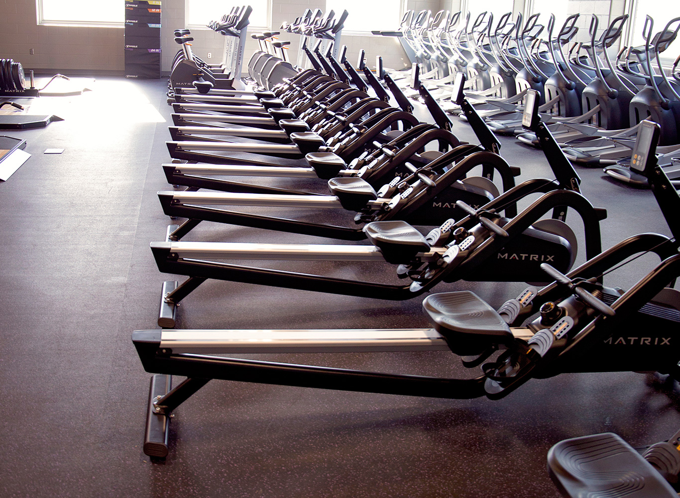 Commercial Fitness Facility Outfitters