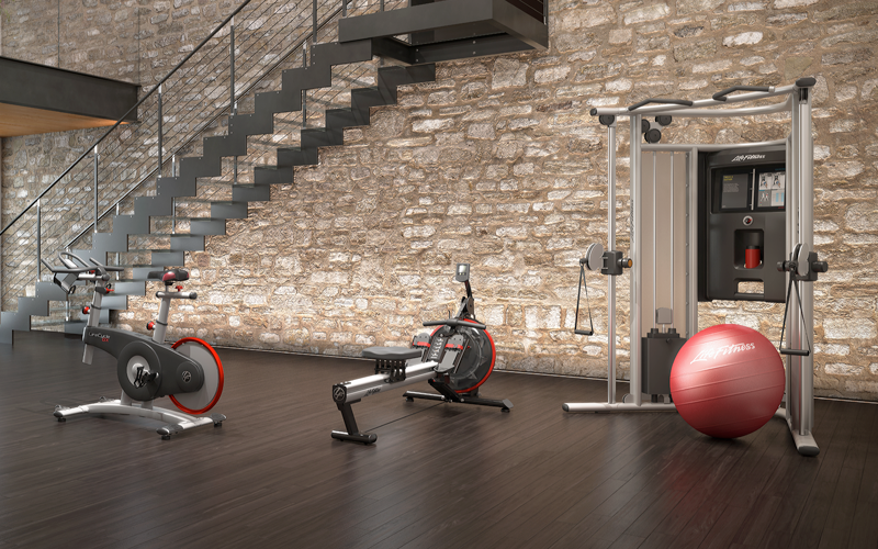NEW Life Fitness Row GX Trainer