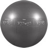 GoFit 75cm Pro Stability Ball