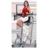 Body-Solid Vertical Knee Raise & Dip