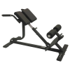 Torque Back Extension Bench