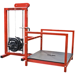 Legend Belt Squat Machine
