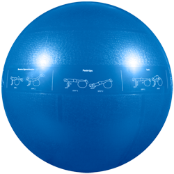 GoFit Professional Grade Stability Ball - 55 cm