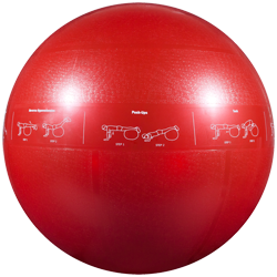 GoFit Professional Grade Stability Ball - 65 cm