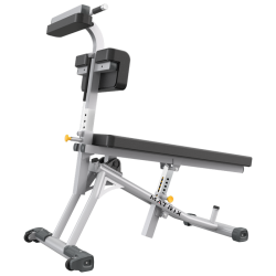 Matrix Magnum Adjustable Ab Bench