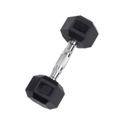 10 lb Rubber Coated Hex Dumbbell