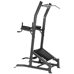 Inspire Fitness VKR Chin Dip Station