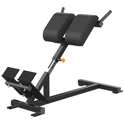 Matrix Varsity Series Back Extension Bench