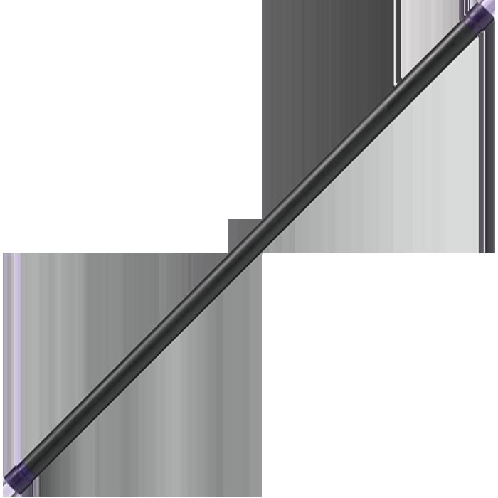 Body-Solid Fitness Bar - 24 lbs (Dark Purple)