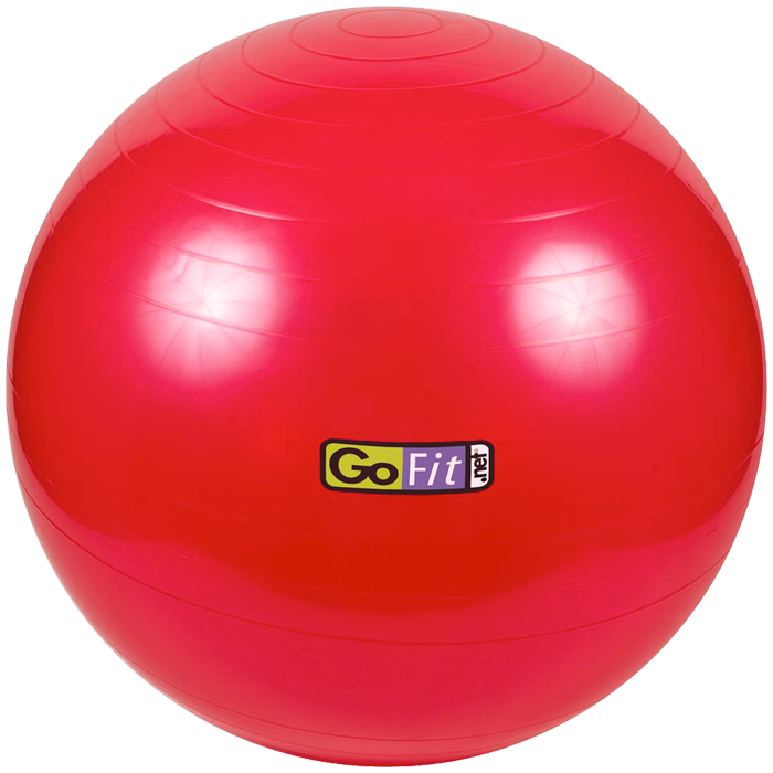 GoFit 55cm Stability Ball