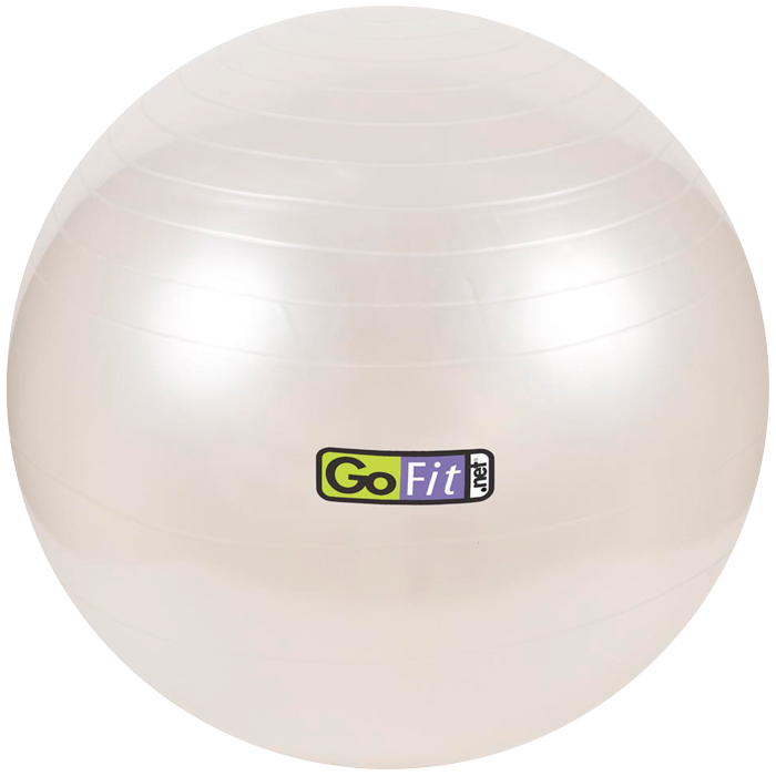 GoFit 65cm Stability Ball
