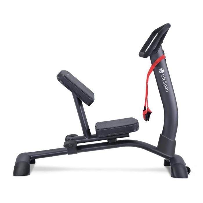 LifeSpan SP1000 Stretch Partner Pro