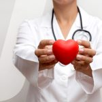 Medical professional holding a fake heart to fight heart disease.