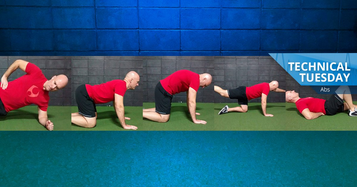 Ab exercises - side plank, cat/camel, bird dog and more